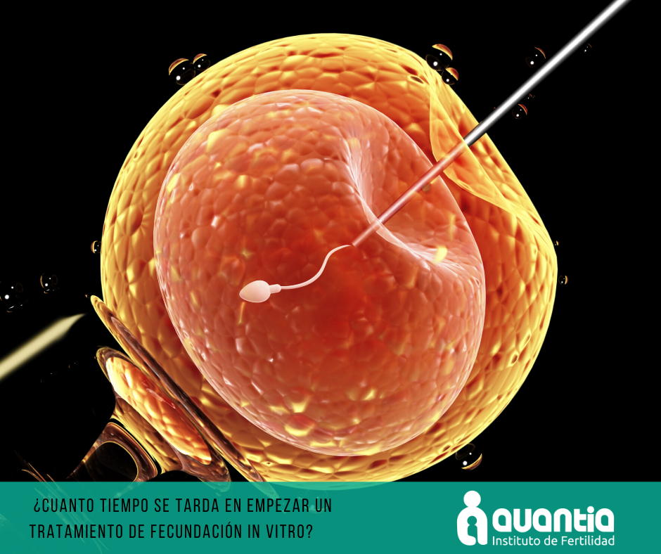 Tiempo en realizar un proceso de Fecundación in vitro